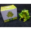 Novelty Frog Money Box