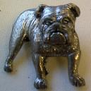 Dog Theme Pewter Pin Badge Ref D3