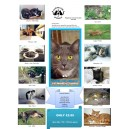 2017 Caring for Animals Calendar