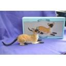 Crouching Siamese Cat